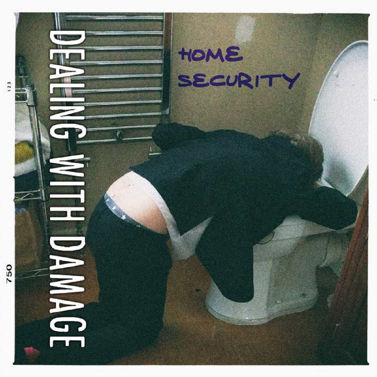 Review: Dealing With Damage – The Home Security EP